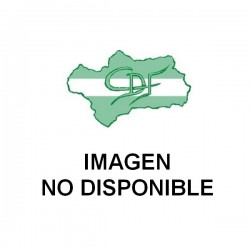 MANTECA DE CACAO *Caja 5 Kgs.
